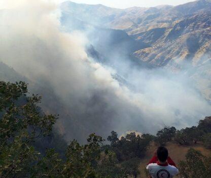 ۲۵۰ هکتاراز مراتع کوه دلا در اندیکا خاکستر شد