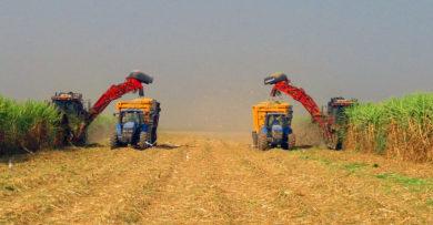 مدیریت جلوگیری از کاهش عملکرد در سیستم تولید نیشکر